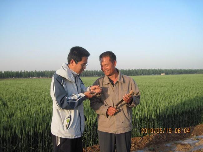 Discuss with farmer about watermelon disease in the field